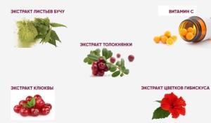 phytocinol-sostav